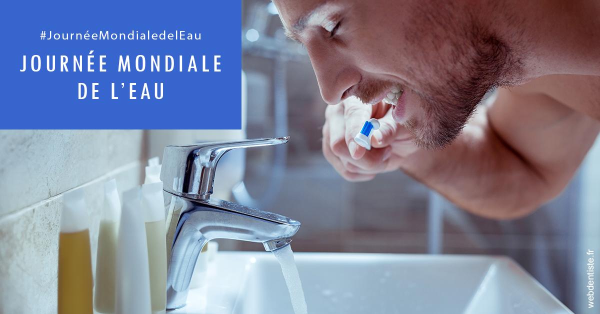 https://dr-treil-bruno.chirurgiens-dentistes.fr/Journée de l'eau 2